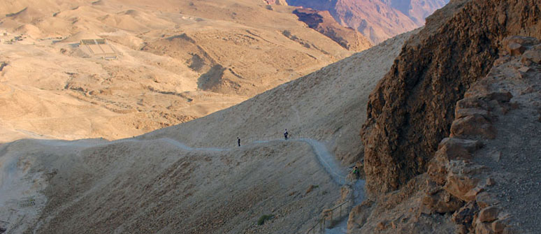 Dead Sea and Masada Day Tours