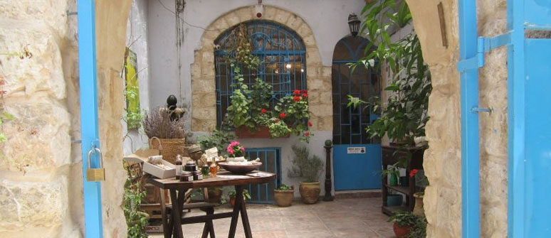 Northern and Coastal Israel Tours