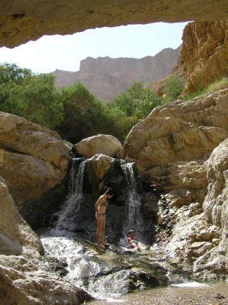 Ein Bokek Israel Oasis