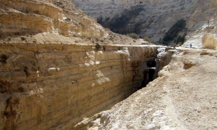 Negev Desert Attractions My Top Picks
