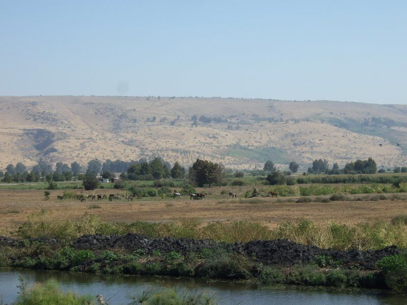 The Golan Heights Israel – An Insider's Guide