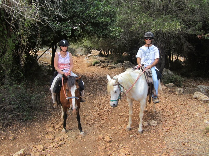 Upper Galilee A Fantastic Day Trip in Northern Israel
