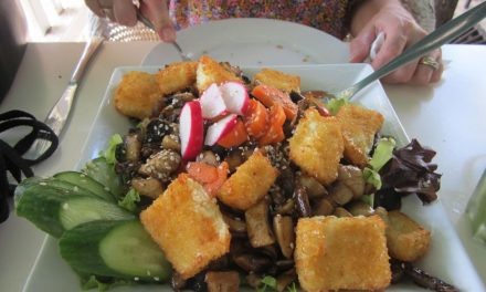 Israel Food; The Melting Pot and Salad Bowl of the Mediterranean