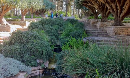 The Hidden Treasures of Israel