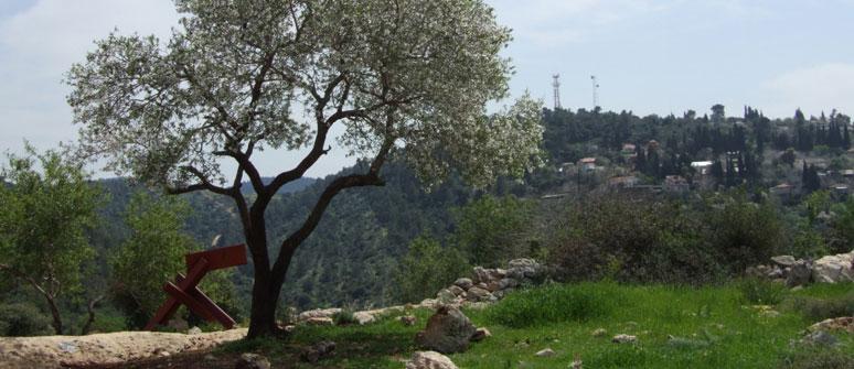 Latrun – The Ways to Jerusalem