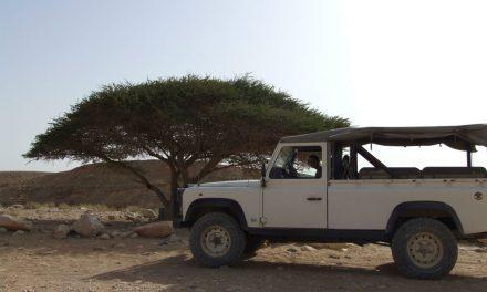 Three Day Hiking Israeli Deserts